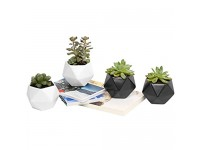 Plant Pot  Rosoli 4pcs Ceramics Indoor Planter Garden Pots for Succulents  African Violets  Cactus  Herbs - 3.5 Inch Flower Pots with Drainage Hole and Waterproof Tray (4  Black and White)