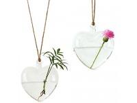 Ivolador 2PCS Heart-Shaped Hanging Glass Flower Planter Vase Terrarium Container for Hydroponic Plants Home Garden Decor