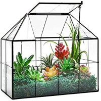 "Large Glass Terrarium House Planter – Succulent Plant Terrarium House Shape Glass Greenhouse Terrarium with lid 9.8""X7.9""X5.9"" NA"