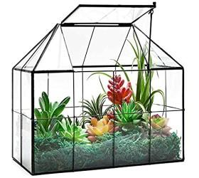 Large Glass Terrarium House Planter – Succulent Plant Terrarium House Shape Glass Greenhouse Terrarium with lid 9.8X7.9X5.9 NA