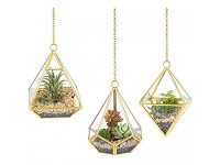 Mkono 3 Pcs Small Hanging Glass Terrarium Geometric Container Vertical Modern Planter Windowsill Decor DIY Box Centerpiece Gift for Succulent Fern Air Plant Miniature Fairy Garden (Plant Not Included)