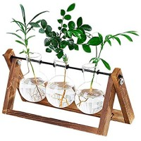 Plant Terrarium Wooden Stand  Desktop Glass Planter Bulb Vase with Retro Solid Wooden Stand and Metal Swivel Holder for Hydroponics Plants Home Garden Office Wedding Decor (3 Bottle)