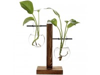 Yistao Stand Glass Planter Bulb Vase  Glass Flowerpot with Vintage Wood Frame Holder for Hydroponic Plants Home Office Wedding Decoration - (2 Bulb Vase)