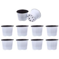 Happyyami 50Pcs Succulent Seedling Planter Plastic Plant Nursery Pot Starting Pot Flower Plant Container with Drain Holes for Seedlings Cuttings Transplanting White