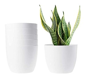 T4U 6 Inch Self Watering Planters Plastic Plant Pot Modern Decorative Flower Pot/Window Box for All House Plants Flowers Herbs African Violets Succulents - White Set of 6